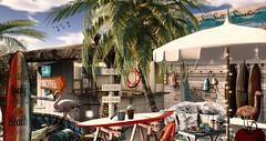 Surf Motel (RyanTailor (Taking Clients)) Tags: alirium lb littlebranch tree bush palm animated season summer outdoor virtual virtualworld secondlife deco decor decorate decoration furniture exterior interior design event summerfest merak vespertine 22769 nutmeg kraftwork tlc flamingo animal animals granola shack surfboard surfshack beachshack drd
