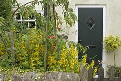 LockHouse (Tony Tooth) Tags: nikon d600 nikkor 50mm f18g cottage garden caldoncanal stocktonbrook staffs staffordshire