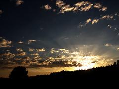 sunset in Smoldzino (Darek Drapala) Tags: sun sky silhouette sunset skyskape smoldzino lumix light panasonic poland polska panasonicg5 baltic nature clouds trees evening