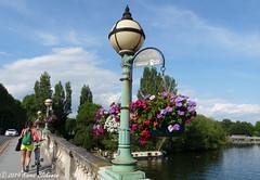 Hanging baskets, Reading Bridge (karenblakeman) Tags: reading uk bridge readingbridge hangingbaskets flowers thames river july 2019 berkshire