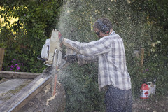 Florian at work (picsbyraf) Tags: treesurgery chainsaw labour diy woodwork