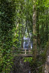 Seimeira de Vilagocende, Galicia (kike.matas) Tags: canon canoneos6d canonef1635f28liiusm kikematas seimeiradevilagocende fonsagrada lugo galicia españa paisaje nature puente cascada agua rio bosque arboles senderismo excursión hiking lightroom6