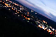 bokeh_Sigma50f1-4Art_f2_60384 (Cameralabs) Tags: 5014art 50mm art bokeh nachtaufnahme objektiv sigma test cameralabs f14 lens nightshot review