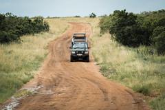 Masai Mara-8 (FlyLoveTw) Tags: africa kenya masai mara safari 非洲 肯亞 獵遊 big5