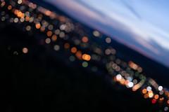 bokeh_Sigma50f1-4Art_f1-4_60381 (Cameralabs) Tags: 5014art 50mm art bokeh nachtaufnahme objektiv sigma test cameralabs f14 lens nightshot review