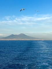 Seagulls (2benny) Tags: sea summer sky seagulls fly mare ship estate nave cielo napoli naples vesuvio gabbiani vulcano volare clouds nuvole blue blu