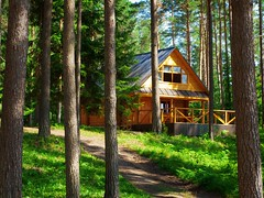 chata (radka_nohejlova) Tags: architecture building cabin cottage country countryside dwelling estate exterior forest habitation home house hut lodge log lumber nature outdoor pine recreation residence residential rest roof rural rustic suburb summer timber village window wood wooden