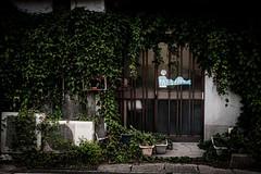 湯田温泉 #1ーYuda Onsen Hot Spring #1 (kurumaebi) Tags: yamaguchi 湯田温泉 山口市 street dusk night hotspring fujifilm 富士フイルム フジフイルム xt20