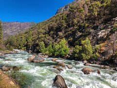 A hop, skip and a jump to the other side (World-viewer) Tags: travel trees mountains cold water beautiful river landscape nationalpark amazing rocks action outdoor awesome ngc scenic spray rapids yosemite vista refreshing nationalgeographic iphone iphone8 iphone8plus explore wander whitewater