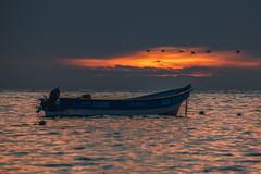 Burning Skies (era.ph) Tags: boat sunset creek fisherman chile bio viii region chilebloggers chilean wave ocean water birds seagull grey reflection mood era