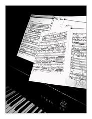 practizzing Schönberg [... 'Pierrot Lunaire' ...] (Armin Fuchs) Tags: arminfuchs music musicalinstrument steinway score schönberg arnoldschönberg pierrotlunaire piano grandpiano diagonal universityofmusic würzburg huawei smartphone