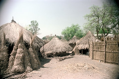 79-075 (ndpa / s. lundeen, archivist) Tags: nick dewolf color photograph photographbynickdewolf 1976 1970s film 35mm 79 reel79 africa northernafrica northeastafrica african ethiopia ethiopian southernethiopia rural village building buildings hut huts thatchroof thatchedroof houses homes trees fence sticks branches wood villagelife rurallife