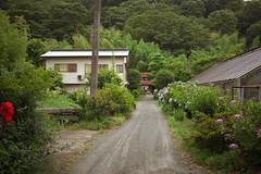 oi#5 (tetsuo5) Tags: 足柄上郡 大井町 ashigarakamigun oimachi eos5dmarkⅱ ef40mmf28stm