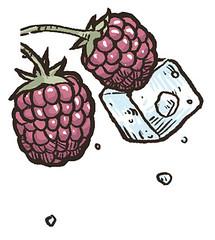 BB Jack & Ginger (Luxury of Freedom) Tags: jackginger bigberry cocktail bbvan drink bigberrycocktails illustrations