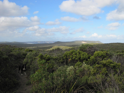 Monkey Rock To Lights Beach Walk - Bibbulmun Track, Denmark, Western Australia