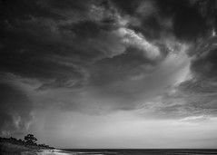 Passing Storm (Thomas Pohlig) Tags: storm sunset beach clouds stormclouds sand seashore seascape landscape jersey jerseyshore tree light shadow blackandwhite blackandwhitephotography monochrome mono