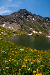yellow flowers and mountain lake in the valley of the Thirteen Lakes,Prali, Piedmont,Italy (mario forcherio) Tags: alps blue flowers glacial hiking ice italy lake mountain panorama paradise piedmont prali snow thirteen trekking valley yellow