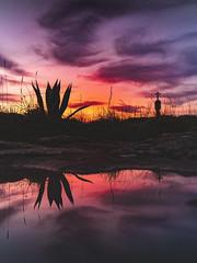 Cabo de Cruz (Noel F.) Tags: sony a7rii ii a7r fe 24105 cabo de cruz barbanza arousa ria galiza galicia mencer sunrise