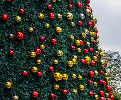 Decorated Christmas tree (phuong.sg@gmail.com) Tags: art background ball bauble bead blurred branch bright celebrate christmas classy colorful december decorated decoration decorative design elegant fairy festive fir floral garland gold golden green happy holiday jolly light merry new ornament pattern pine red retro season seasonal shiny star texture toy traditional tree vintage winter year