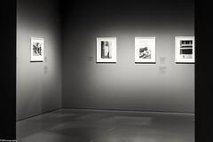 pictures at an exhibition (fhenkemeyer) Tags: light nrw düsseldorf kunstpalast museum fotografinnenanderfront
