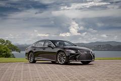 2019 Lexus LS 500H_Obsidian_Black Art Wood Organic26