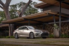 2019 Lexus ES 300H_Atomic Silver_Black Linear Expresso Wood_Ultra Luxury21