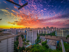 Day breaking (Rexer Ong) Tags: sky building cloulds city town cityscape concrete colour trees roads