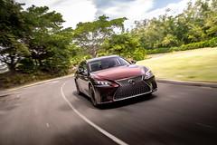 2020 Lexus LS 500 Inspiration_Sonic Agate_LWhite48