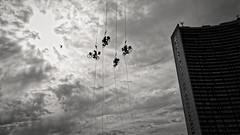 biking with birds (frax[be]) Tags: streetphotography sky clouds atmosphere fuji 16mm city urban outdoor highcontrast noiretblanc monochrome blackandwhite bnw