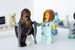 At the Vet (thereeljames) Tags: chewbacca lego legophotography toyphotography toys toyphotographers starwars pets animals