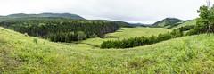 Sheep River Provincial Park (deirdre.lyttle) Tags: alberta aspens canada foothills kananaskiscountry sheepriver sheepriverprovincialpark mountains water ngc