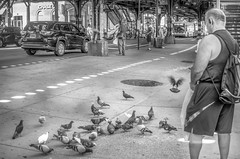 Altruistic. (Capitancapitan) Tags: altruistic neury luciano animals food manhattan camera pentax street photography instagram facebook music youtube urim y tumim el mundo gira nyc new york city people black white