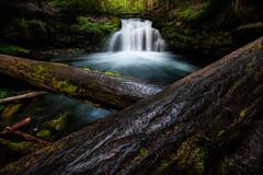 Pacific Northwest Waterfall (Jami Bollschweiler Photography) Tags: pacific northwest waterfall photography landscape oregon utah photographer female long exposure