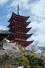 Five Storied Pagoda (atsubor) Tags: hiroshima japan 広島 日本 宮島 island pagoda towers
