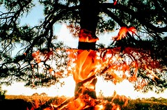Burning times (lunacornata) Tags: 35mm analog analogue analogica analogico analoga analogo film filmisalive keepfilmalive kodak landscape double doubleexpo nature naturescape