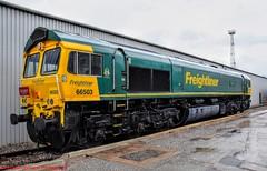 66503 @ Crewe (A J transport) Tags: class66 diesel locomotive 66503 depot shed freightliner railway trains england d5300 nikkon dlsr openday ondisplay railwaymagazine