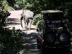 (Markus Hill) Tags: travel canon arusha tansania 2019 africa nature tanzania safari