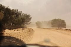 tempête de sable (safrounet) Tags: sand sable storm tempête vent kgalagadi