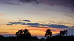 *** (pszcz9) Tags: polska poland przyroda nature natura naturaleza pejzaż landscape drzewo tree roztocze zachódsłońca sunset beautifulearth sony a77