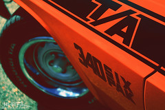 Orange Challenger (Hi-Fi Fotos) Tags: 1970 dodge challenger ta transam racing special 340 sixpak vintage american musclecar graphics orange mopar classiccar 70s nikkor 1755 28 nikon d7200 dx hififotos hallewell