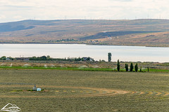 Hay field by Banks Lake (Washington State Department of Agriculture) Tags: columbiariver june summer wsdagov washingtonstatedepartmentofagriculture agriculture field washington washingtonstate wsda
