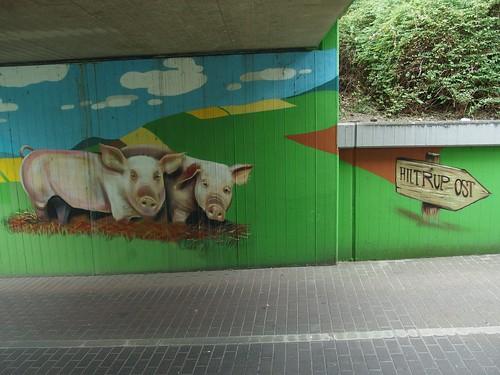Kühe, Schweine – Hiltrup-Ost