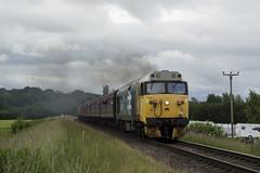 50015 2E33 (DM47744) Tags: east lancashire railway train trains diesel diesels engine travel traction ralilways preserved locomotive loco rail nikon d3100 class 50 50015 valiant large logo vac burrs country park