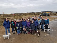 DON'T forget it's the litter pick on Winterton beach this Saturday from10.00am. All volunteers should meet at the Dunes Café. For other events in Winterton please visit: https://www.wintertononsea.co.uk/whats-on.html (Winterton-On-Sea) Tags: litterpick beachclean
