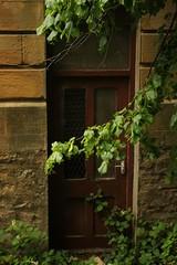 bowes museum (kokoschka's doll) Tags: bowes museum door tree barnardcastle
