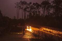 The road (elsableda) Tags: night lights forest car headlights girl portugal sintra lisbon