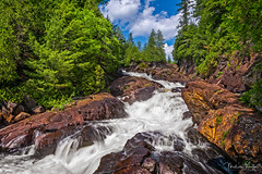 Ragged Falls (Malcolm Thornton Photography) Tags: ifttt 500px malcolmthorntonphotography malcolmthornton white water adventurer algonquin highlands canada conifer evergreen falls gravel landscape landscapes nature north america ontario oxtongue river pine needles tree plant plants ragged rapids rocks rugged spruce trees waterfall rocky algonquinhighlands gravelfalls northamerica oxtongueriver pineneedles pinetree raggedfalls sprucetree whitewater