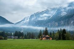 Kandersteg, Switzerland (Eric_X) Tags: kandersteg switzerland alps alpine village meadow overcast dawn
