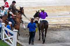 Colonial Front (Piermarini, Tammi) (avatarsound) Tags: boston suffolkdowns suffolkdownssendoff horse horseracing horses jockey jockeys race racetrack racing rider riding sport