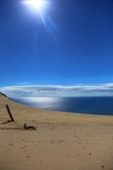 carlo sand blow, rainbow beach, cooloola coast, queensland, australia (ISO 69) Tags: